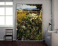 Obrazy - LETO fotoplátno 60x80 cm - 8414663_