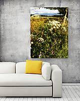 Obrazy - LETO fotoplátno 60x80 cm - 8414665_