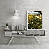 Obrazy - LETO fotoplátno 60x80 cm - 8414667_