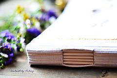 Papiernictvo - Kniha hostí s textom - 8416934_