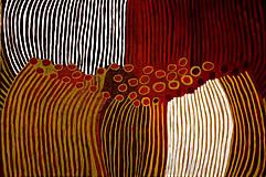 Obrazy - Kings canyon - 8418602_