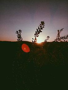 Fotografie - Na potulkách prírodou - 8430735_