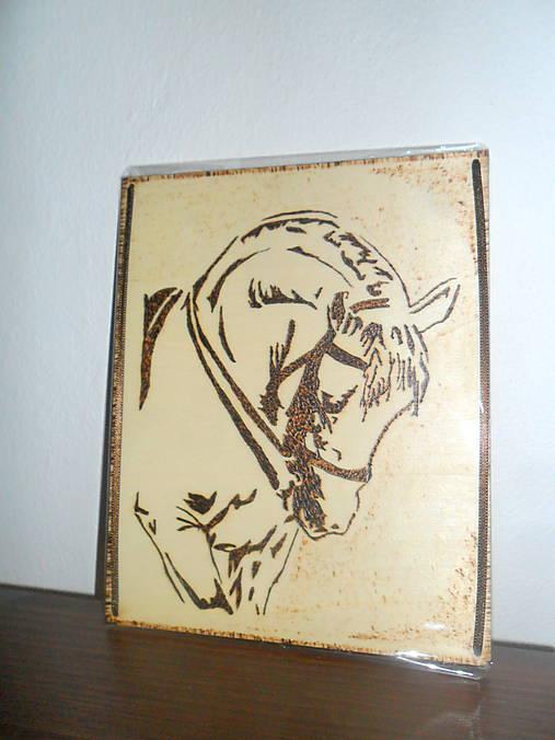 Obrázok koník   Cilekova - SAShE.sk - Handmade Obrázky 9a3b4fd4eb