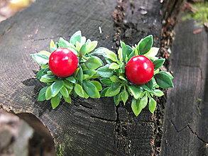 Náušnice - červené bobulky na keři - 8438391_