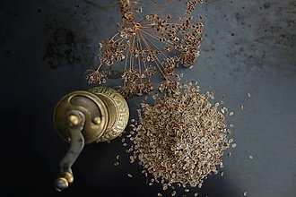 Potraviny - kôprové semienka - 8439847_