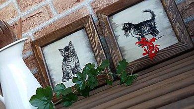 Obrázky - drevené obrázky - vidiecke mačiatka - 8442730_