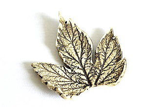 Odznaky/Brošne - Keramická brošňa Lístok z hrozna - 8446563_