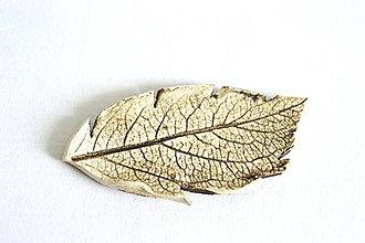 Odznaky/Brošne - Keramická brošňa Lístok - 8446650_