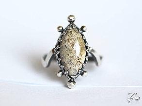 Prstene - Strieborný unikátny prsteň s fosílnym koralom- Kráľovná útesu - 8454229_