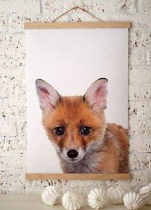 Grafika - -50% Print na plátne FOX  A2 farebná verzia - 8467312_
