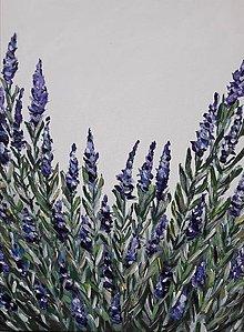 Obrazy - Provence - 8494448_