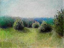 Obrazy - Na potulkách II (2.séria)  - 8498412_