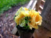 Ozdoby do vlasov - růže v parku - 8501092_