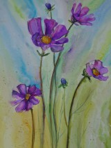 Obrazy - Poľné kvietky ... (akvarel) - 8513887_