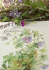 Obrazy - Obraz Pakost - Geranium, tlač A4 - 8517336_