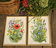 Obrazy - Lúčne kvety 1, tlač vo veľkosti A4 - 8519468_
