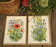 Obrazy - Lúčne kvety 2, tlač vo veľkosti A4 - 8519490_