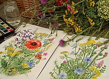 Obrazy - Lúčne kvety 2, tlač vo veľkosti A4 - 8519491_