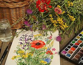 Obrazy - Lúčne kvety 2 , tlač A4 - 8519492_