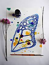 Motýlie krídlo