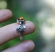 Prstene - Jesenný - 8528841_