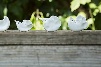 Dekorácie - Vtáčik porcelánový - 8535677_