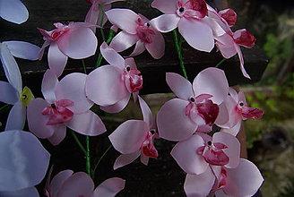 Dekorácie - Ružová orchidea - 8542370_