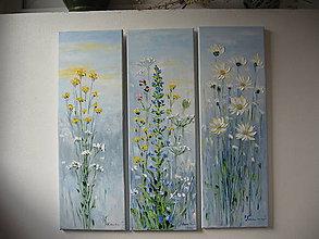 Obrazy - Herbs - 8548549_