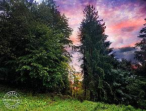 Obrazy - RÁNO fotoplátno 80x60 cm - 8554522_