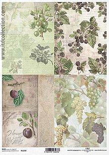 Papier - ryžový papier ITD 1259 - 8554883_