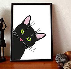 Grafika - Čierna mačka - 8557986_