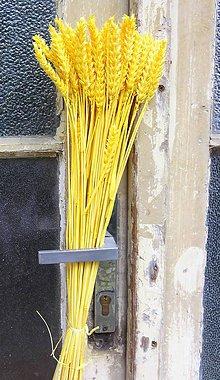 Dekorácie - Obilie žlté - 8575060_