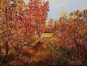 Obrazy - Potulky jeseňou - 8574317_