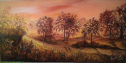 Obrazy - cestičkou poľnou kráčať budem.... - 8579258_