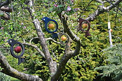 Pre zvieratká - Vtáčie krmítko Silueta - 8579034_