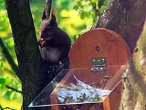 Krmítko pre veveričky