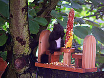 Krmítko pre veveričky Bar