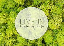 Suroviny - Islandský aranžérsky mach (jarná zelená)- Island moss - 8580326_