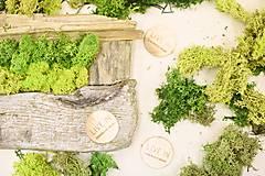 Suroviny - Islandský aranžérsky mach farba podľa výberu - Island moss - 8580419_