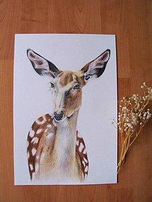 Kresby - Kresba: Danielka vo farbe :) - 8579441_