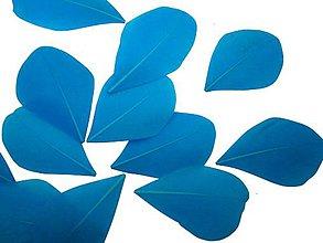 Suroviny - 38. Modré lopatky, mix 10 ks - 8590464_