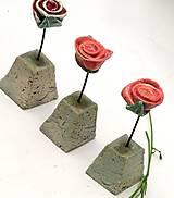 kvet ruža -ružičková záhrada