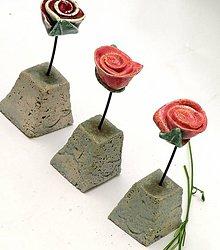 Dekorácie - kvet ruža -ružičková záhrada - 8591087_