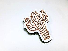 Odznaky/Brošne - Kaktus brošňa II - 8598519_
