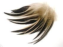 Suroviny - 44. Kačička, čierno-šedé pruhy- mix 10 ks - 8601780_