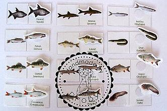 Hračky - pre malých rybárov - 8606767_