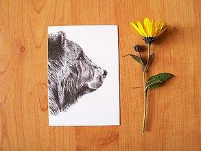 Papiernictvo - Pohľadnice: Zvieratká do sveta sa vybrali čb - 8603457_