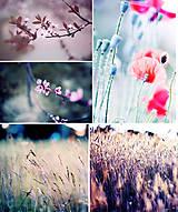 - Fotky na želanie  - 8618404_