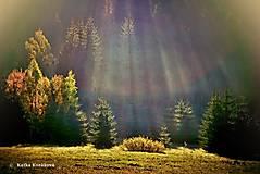 Fotografie - ... jesenné čarovanie ... - 8624651_