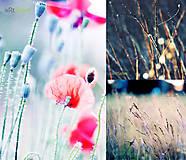 - Fotky na želanie - 8662231_